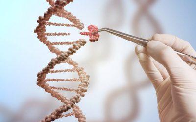 Edición de Genomas de Plantas
