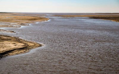 Cómo impactará la bajante del río Paraná en el agro y en el ambiente