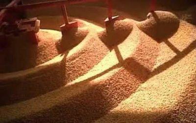 ¿Cómo afectaría una baja de los precios de las commodities la economía?