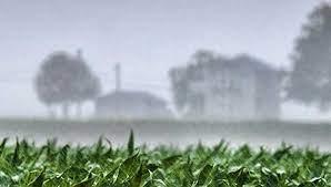 Anticipan lluvias generalizadas: día por día, qué dice el pronóstico del tiempo