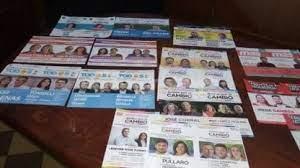Resultados de las PASO 2021: cuántos candidatos vinculados al campo quedaron en competencia
