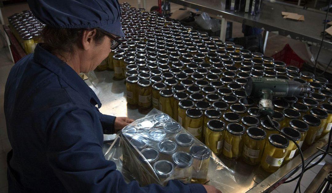 Reclaman medidas urgentes para evitar faltante de envases de vidrio ante la próxima cosecha de economías regionales