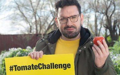 Desafío Tomate: Como si contestara a la campaña maniquea de Greenpeace, la alemana Bayer anunció una nueva línea de semillas para hacer tomates orgánicos