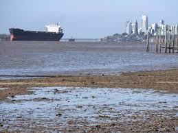 Prohíben la exportación de pescado de río por la bajante del Paraná