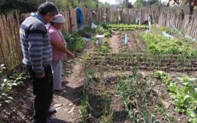 Banco Nación presentó líneas de créditos para pequeños productores de la economía social y agricultura familiar