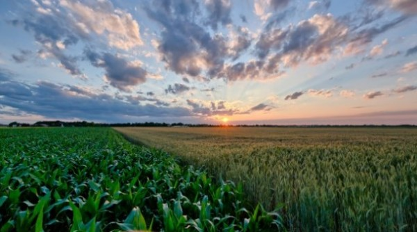 Perspectiva Agroclimática para Argentina – PAC
