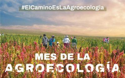 """Empezó el Mes de la Agroecología: """"Esto es una revolución del pensamiento"""", aseguró su máximo referente académico en Argentina"""